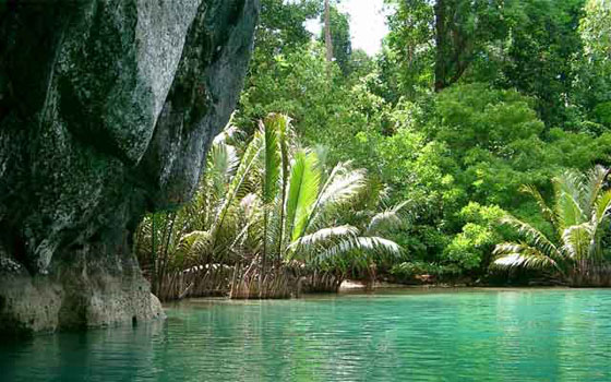 The Puerto Princesa Subterranean River  winds through a cave before flowing into the South China Sea