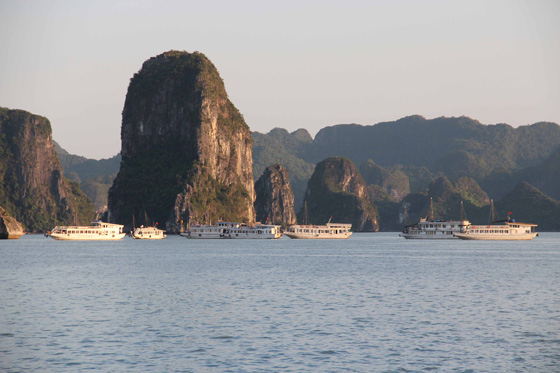 The magnificent Halong Bay has become a magnet for visitors since being elected as one of the New7Wonders of Nature on 11 November 2011.