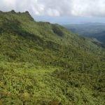 el_yunque_national_forest_puerto_rico_by_geoff_gallice_-_001